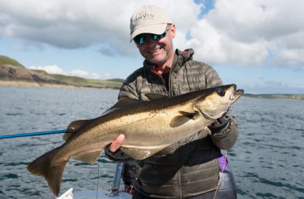 big pollock, trophy pollock, massive Pollack, fly fishing in the sea, pollock fishing Scotland