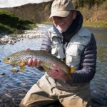 dry fly, trout fishing, rivers in Scotland, River Tweed, Orvis Helios Rod, fishing guide, wild brown trout, best rivers, near Edinburgh, near Glasgow