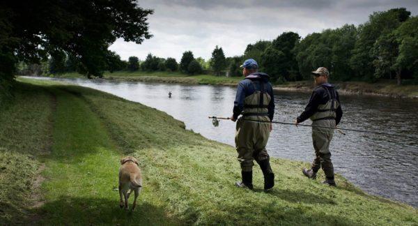 River Tay, salmon guide, scotland, orvis endorsed guide, salmon fishing scotland