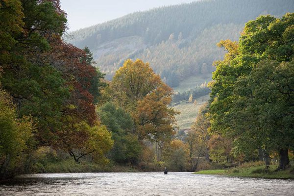 River Tweed, Fishing Guide, Spey Casting, 5050 on the water, ladies fishing, Orvis, alba game fishing,
