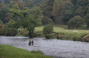 river tweed, fishing guide, best fishing spots, scotland, salmon flies for tweed, alba game fishing, fishing near edinburgh
