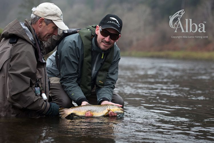 River Tweed, Dry Fly, Wild Brown Trout, Alba Game Fishing, Fly Fishing, Scotland