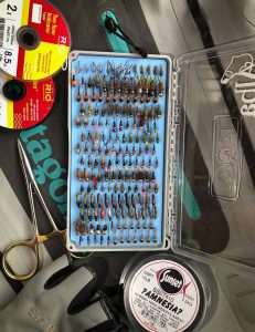 grayling nymphs, fly box, best flies, euronymphing, Czechnymphing, jig heads, tungsten beads, effective, river tweed, teviot