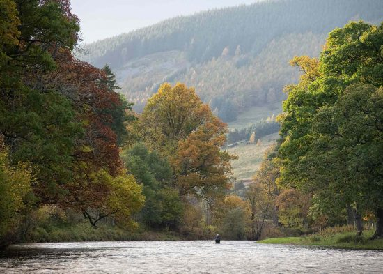 River Tweed, Salmon, trout, grayling, sea trout, fishing, Guide, borders, Spey Casting