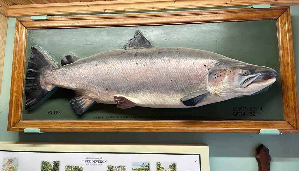 """River Deveron, Mrs Clementina """"Tiny"""" Morison, salmon, record, 61lb,"""